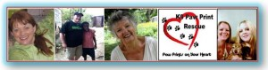 EPISODE 6: Healing Conversations with Mildred Lynn – HUMANITARIANISM; METAPHYSICAL BOOKS, ANIMAL RESCUE; Round Table Topic – LIFE'S CURVE BALLS